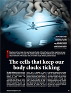 cover article body clock 185x